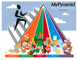 MyPyramidFood